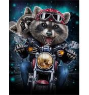 Картина Еноты на мотоцикле 1068