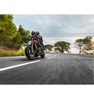 Картина Мотоциклисты 2