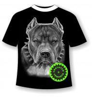 Подростковая футболка Питбуль 875
