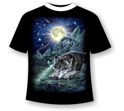 Подростковая футболка Волк на скале №687