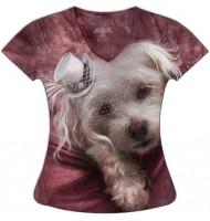 Женская футболка с болонкой KP149